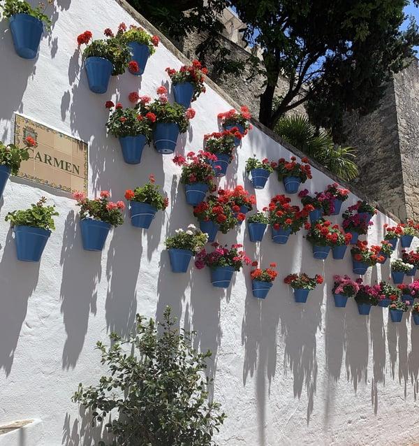 Marbella Old Town III