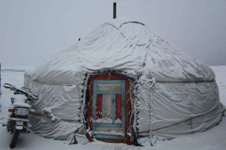 Yurt wilderness